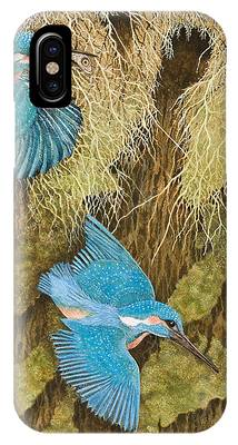 Kingfisher iPhone Cases