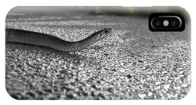 Snake In The Sun IPhone Case