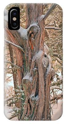 Snowy Dead Tree IPhone Case