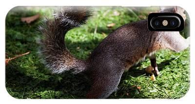 Squirrel Running IPhone Case