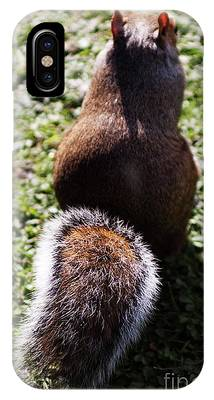 Squirrel S Back IPhone Case
