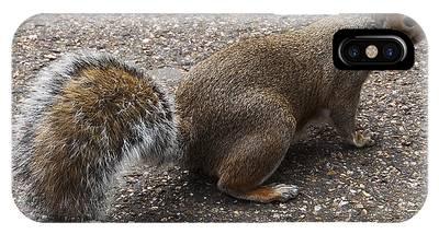 Squirrel Side IPhone Case