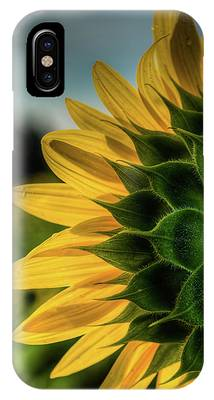 Sunflower Blooming Detailed IPhone Case by Dennis Dame