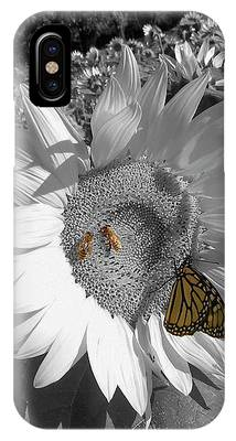 Sunflower In Black And White IPhone Case