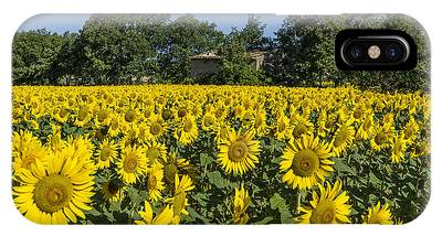 IPhone Case featuring the photograph Sunflowers Provence  by Juergen Held