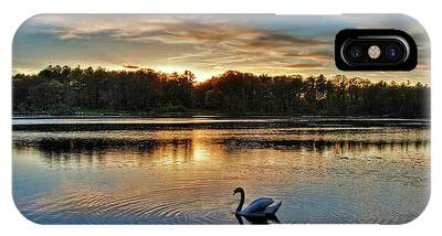 Swan At Sunset IPhone Case