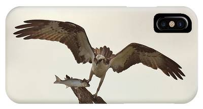 IPhone Case featuring the photograph Take Out Dinner by Sally Sperry