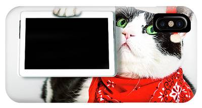 IPhone Case featuring the photograph Technology Christmas Cat by Benny Marty