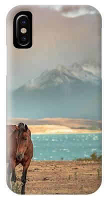 Tekapo Horse IPhone Case by Chris Cousins