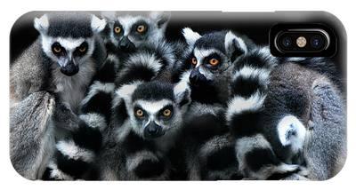 Lemurs Phone Cases