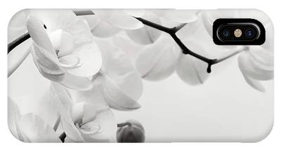 The Last Orchid IPhone Case