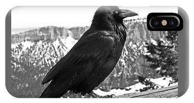 IPhone Case featuring the photograph The Raven - Black And White by Rona Black