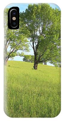 Summer Trees 2 IPhone Case