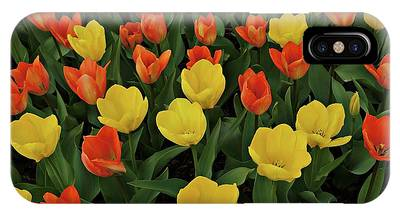 IPhone Case featuring the photograph Tulip Chorus by Patricia Strand