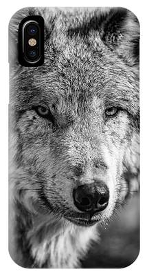 Alpha Wolf Phone Cases