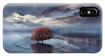 Sunset In Norway iPhone Cases