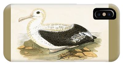 Albatross Phone Cases