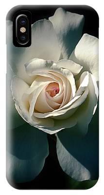 White Rose In The Shadows IPhone Case by Patricia Strand