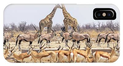 IPhone Case featuring the photograph Wild Animals Pyramid by Benny Marty