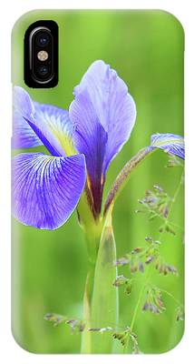 IPhone Case featuring the photograph Wild Iris by Sally Sperry