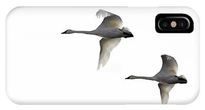 Winter Swans Phone Case by David Wynia