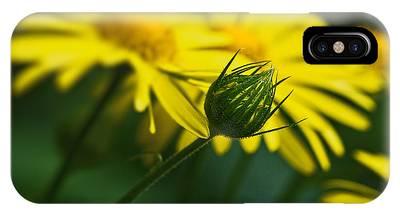 Yellow Daisy Bud IPhone Case