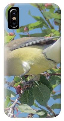 Ready For Take Off IPhone Case by Sally Sperry