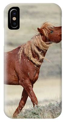 Wild Stallion IPhone Case by Ronnie and Frances Howard