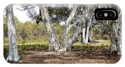 Australian Bush Scene IPhone Case