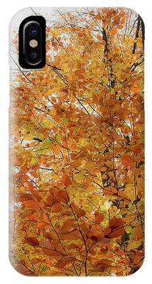 Autumn Explosion 1 IPhone Case