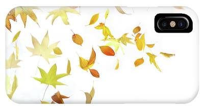 Winds Of Change Phone Cases