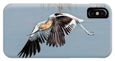 Waterbirds Phone Cases