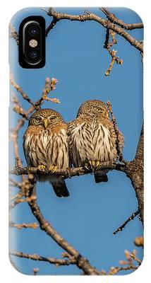 B36 IPhone Case
