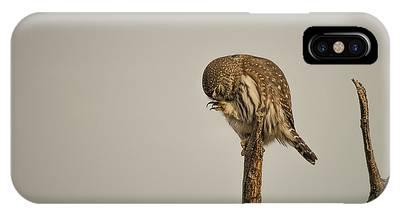B41 IPhone Case