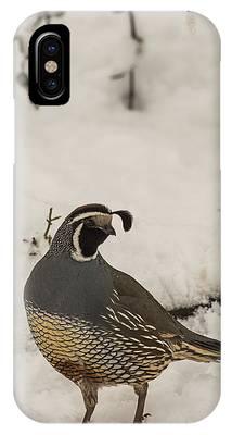 B45 IPhone Case