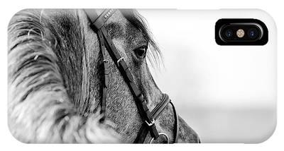 Stallions Phone Cases