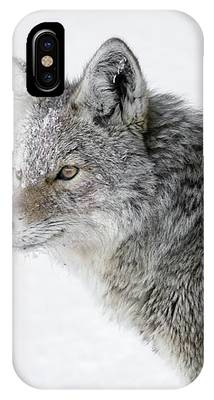 Close Up IPhone Case by Ronnie and Frances Howard