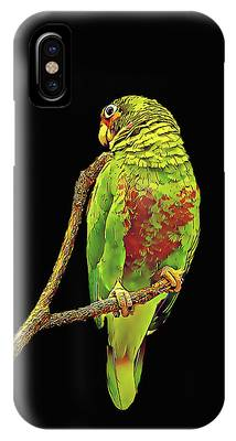 Colorful Parrot IPhone Case