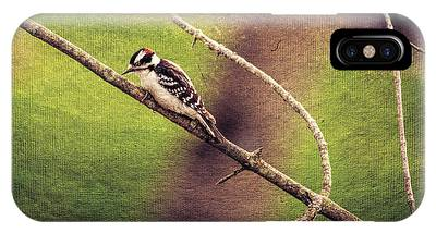Faded Canvas Woodpecker IPhone Case