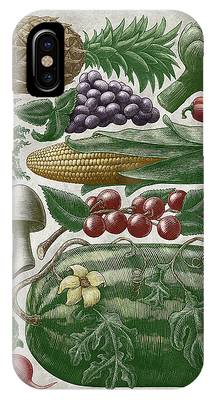 Farmer's Market - Color IPhone Case