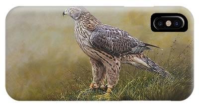 Female Goshawk Paintings IPhone Case