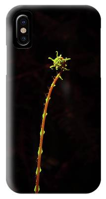 Fiddlefern Superstar IPhone Case