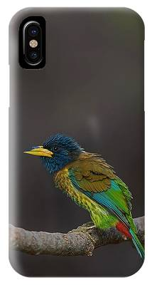 Feather Phone Cases