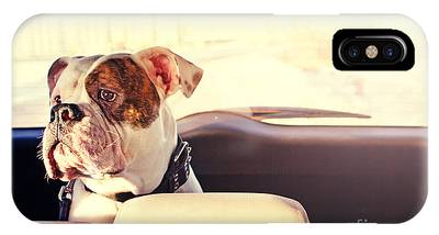 Happy Dog Traveling In The Car Boot Phone Case by Little Moon