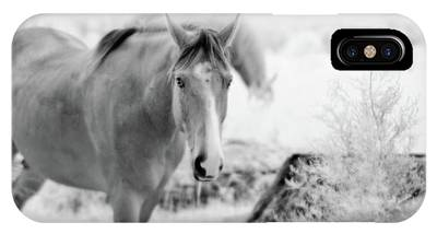 Horse In Infrared IPhone Case