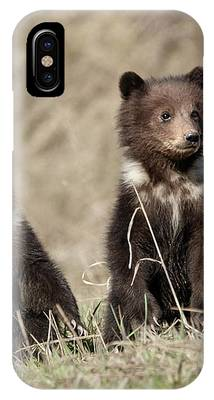 Istanding Tall IPhone Case by Ronnie and Frances Howard