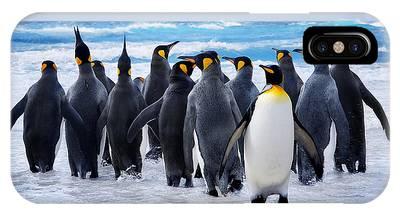 Antarctic Phone Cases