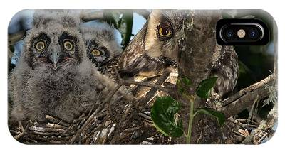 IPhone Case featuring the photograph Long-eared Owl And Owlets by Mike Long