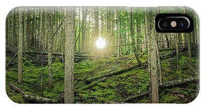 Monashee Forest Sunset IPhone Case