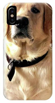 Labrador Dog iPhone X Cases